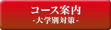 コース案内(大学別)